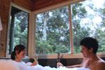 Harmony Forest Villas & Vineyard