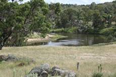 MacDonald River